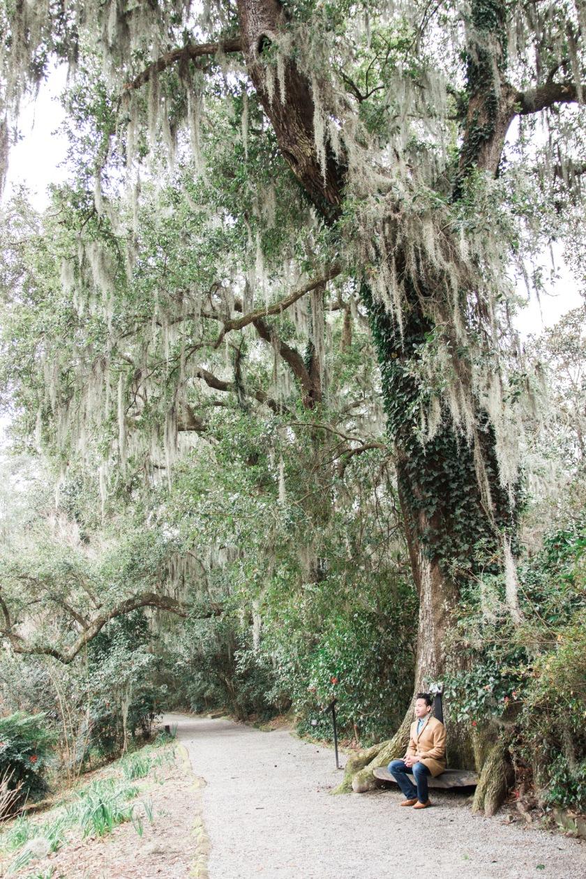 Magnolia Plantation-33