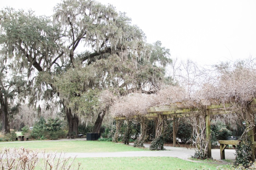 Magnolia Plantation-6