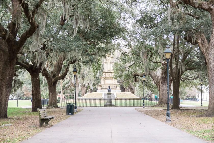 Savannah-20